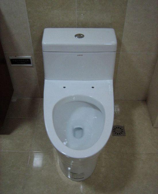 我的梦想我的家装修之便装浴室柜和马桶的安装(6)图片