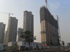赵都新城2号地实拍(2011.12.15)