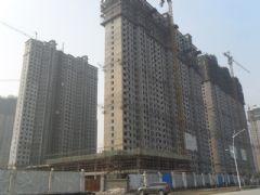 赵都新城6号地实拍(2011.12.15)