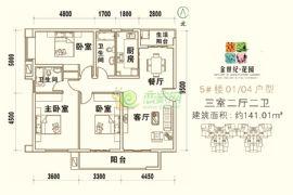 金世纪花园5#楼01/04户型