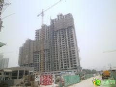 汉成华都6#工程进度(2013.6.9)