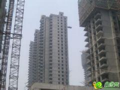 汉成华都7#工程进度(2013.6.9)