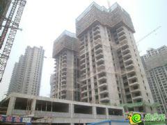汉成华都8#工程进度(2013.6.9)