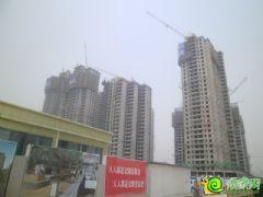 汉成华都9#、10#、11#工程进度(2013.6.9)