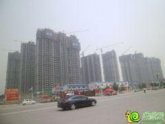 汉成华都工程进度(2013.6.9)