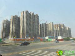汉成华都工程进度(2013.7.7)