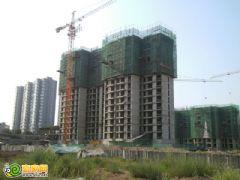 锦绣江南8#工程进度(2012.08.23)