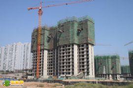 锦绣江南8#工程进度(2012.08.29)