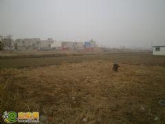 良友·錦觀城項目工程實景圖(2013.2.21)