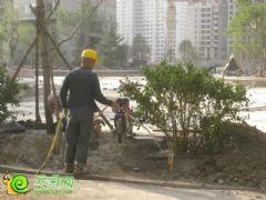御景江山城园林实景(2013.5.21)