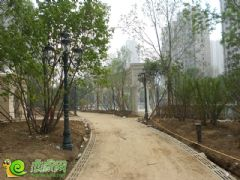 联邦·御景江山项目园林实景(2013.6.24)