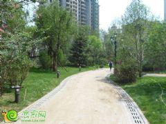 联邦·御景江山项目园林实景(2013.7.19)