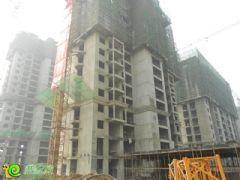枫景华庭工地实景(2013.10.24)