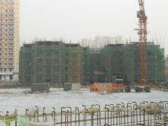 金世纪花园实景图(2013.12.05)