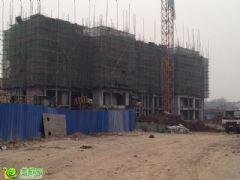 阿尔卡迪亚阳光苑5#楼工程进度(2014.01.08)