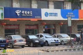 中国电信  中国移动