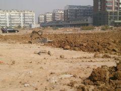 宝利大厦正在平整土地(2012.10.21)