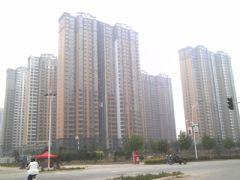 赵都新城S4工程进度(2013.5.25)