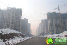 赵都新城17号地实景图(2014.02.16)
