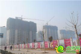 赵都新城13号地实景图(2014.02.16)