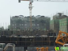 紫岸工程进度实景图(2014.04.07)