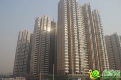 汉成华都工程进度(2013.12.5)