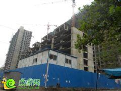 百家新城先锋苑实景图(2013.07.14)