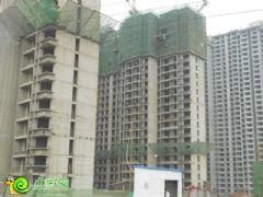 锦绣江南工地实景(2013.08.31)