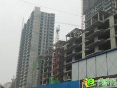 百家新城先锋苑实景图(2013.09.28)