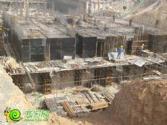 盛锦花园5#楼工地实景