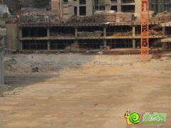 金世纪花园4#工程进度(2013.05.23)