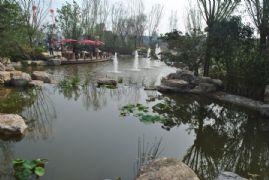 紫岸园林实景图(2013.07.07)