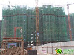 阳光苑4#楼工程进度实景图(2013.08.18)