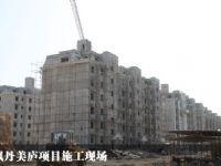 枫丹美庐项目施工现场