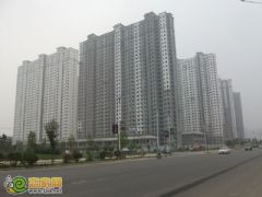 赵都新城6号地实拍(2012.7.7)