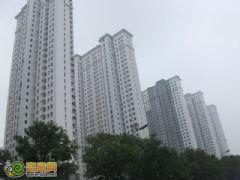 赵都新城2号地实拍(2012.7.7)