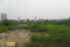阳光新卓广场工地(2012.7.17)