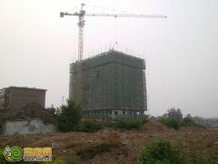 赵都新城3号地实拍(2012.7.19)