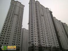 赵都新城5号地实拍(2012.7.19)