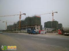 赵都新城7号地实拍(2012.7.19)
