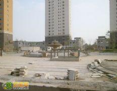 赵都新城2号地绿化(2012.8.10)