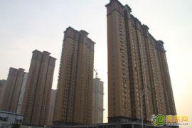赵都新城1号地实拍(2012.10.07)