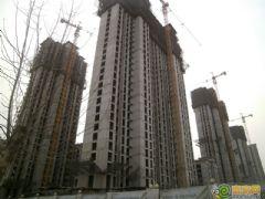 赵都新城3号地工程进度(2013.02.18)