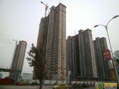 赵都新城4号地工程进度(2013.02.18)