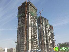盛锦花园5#、7#、8#实景图(2014.05.29)