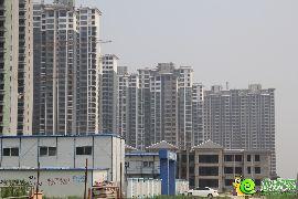 锦绣江南实景图(2014.06.22)