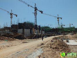 紫岸工程进度图(2014.05.31)