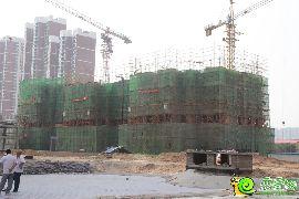 汉成华都4#实景图(2014.06.16)