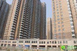 汉成华都实景图(2014.06.16)