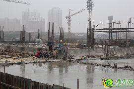 金百合工地实景(2014.6.16)